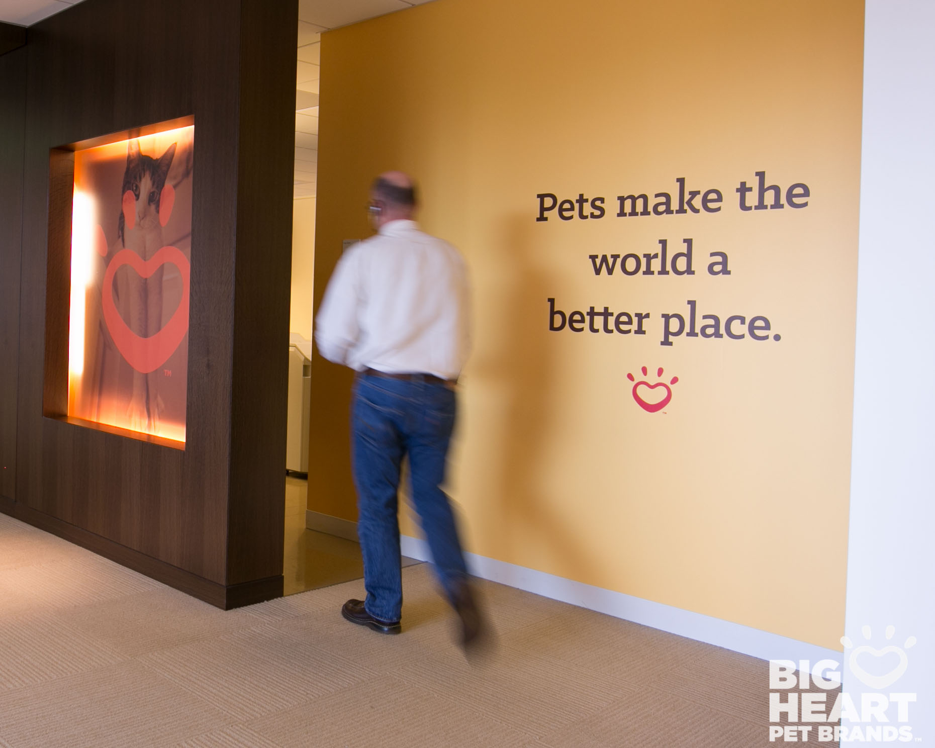Commissioned Photography | Big Heart Office Walls by Mark Rogers