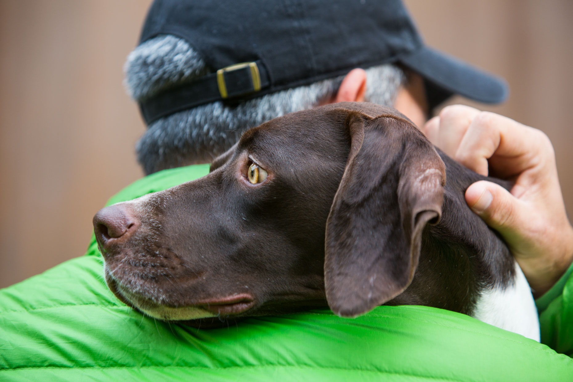 Commercial Pet Photography | Pointer Dog on Mans Shoulder by Mark Rogers