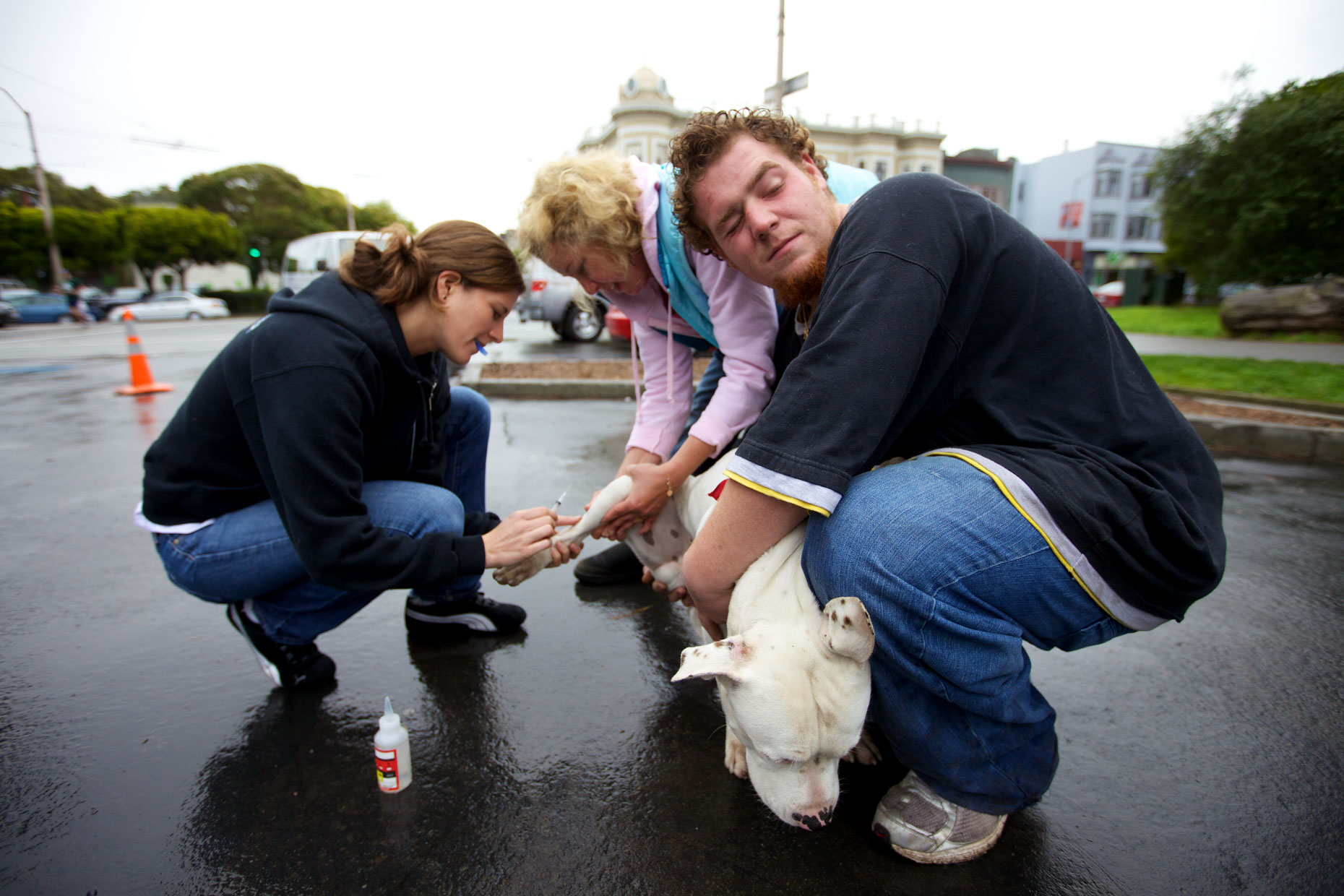 Advertising Photography | Veterinarians Examining Dog by Mark Rogers
