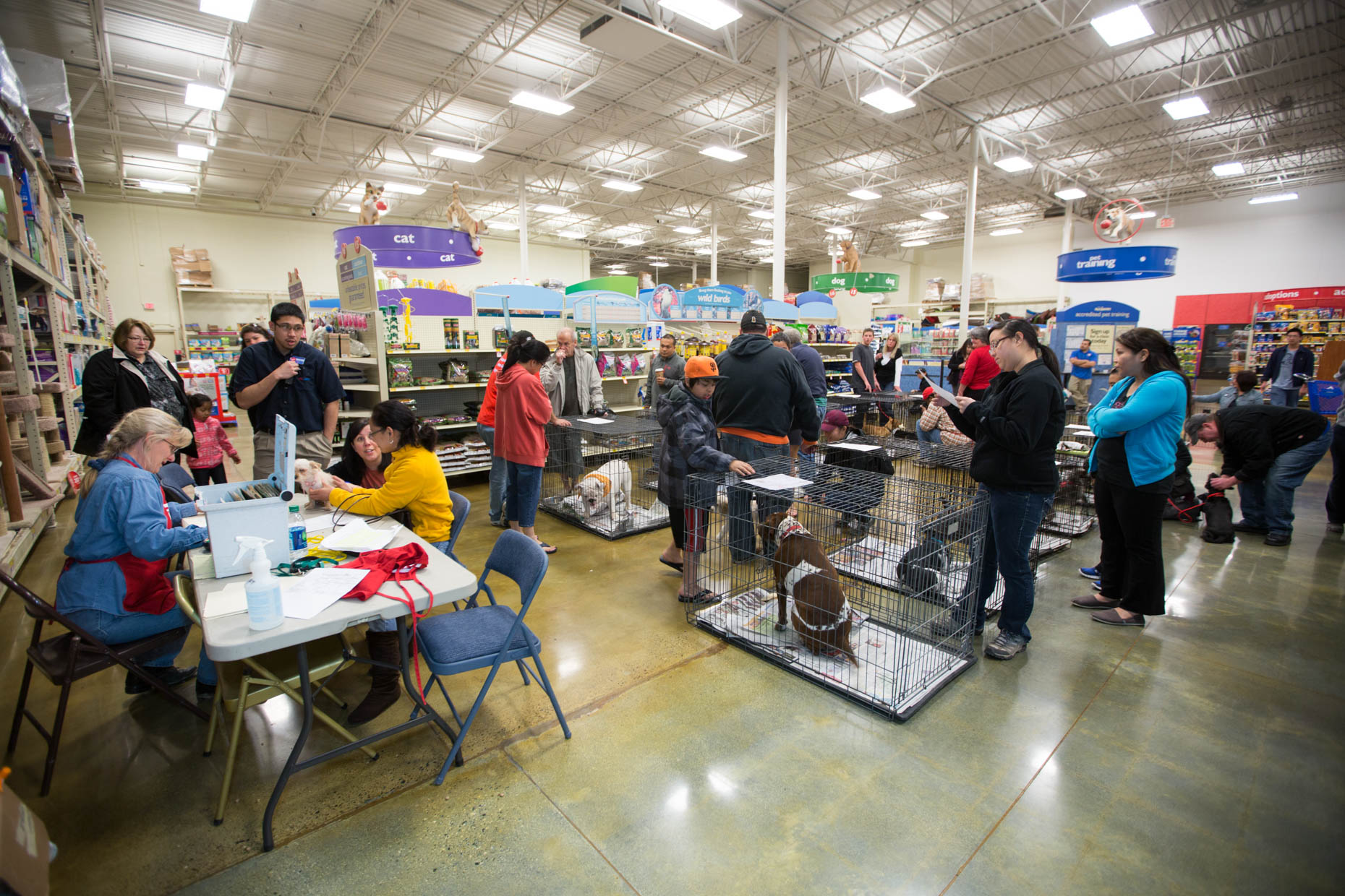 Advertising Photography | Adoption Event at PetSmart by Mark Rogers