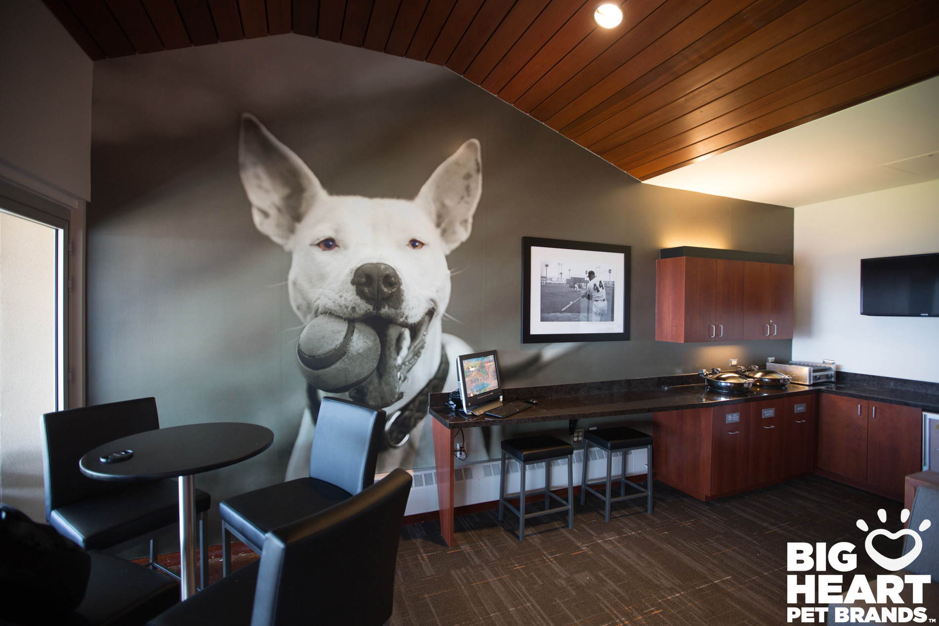 Commissioned Photography | Big Heart Dog Wall by Mark Rogers
