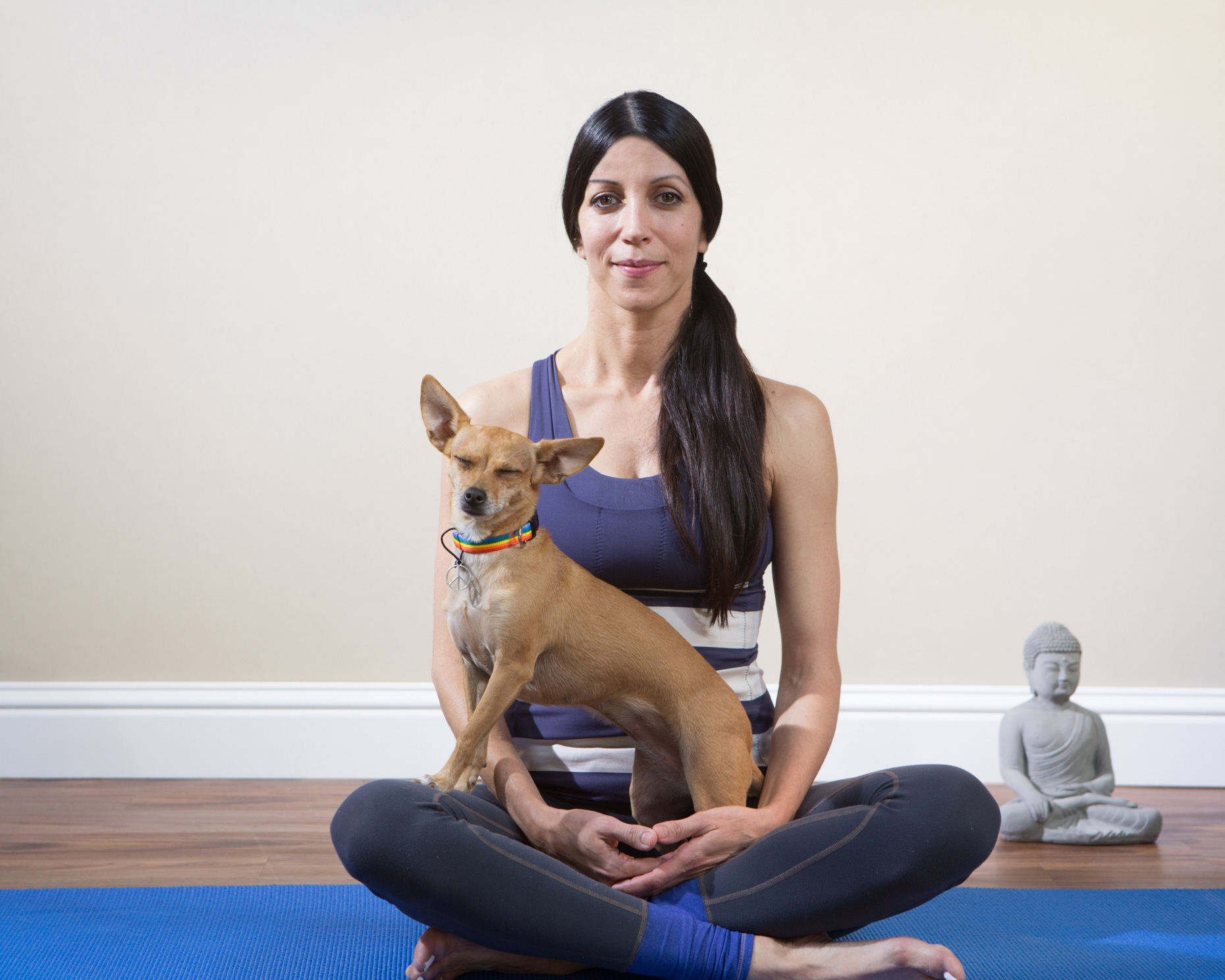 Dog Lifestyle Photography | Chihuahua with Yoga Woman by Mark Rogers