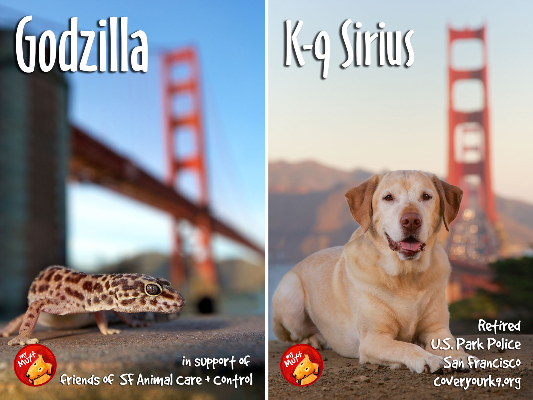 Animal Rescue Poster | Dog and Gecko Golden Gate Bridge by Mark Rogers