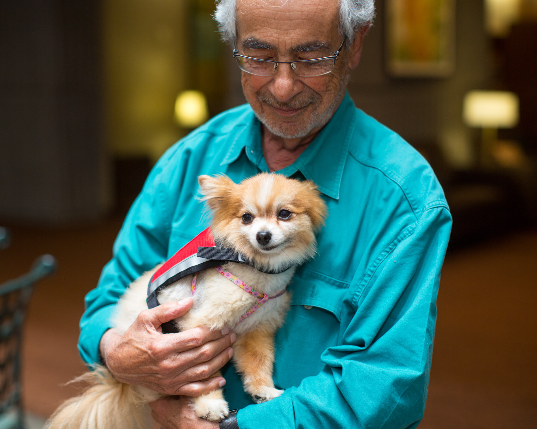 Commercial Animal Photography | Man Holding Therapy Dog on Lap by Mark Rogers