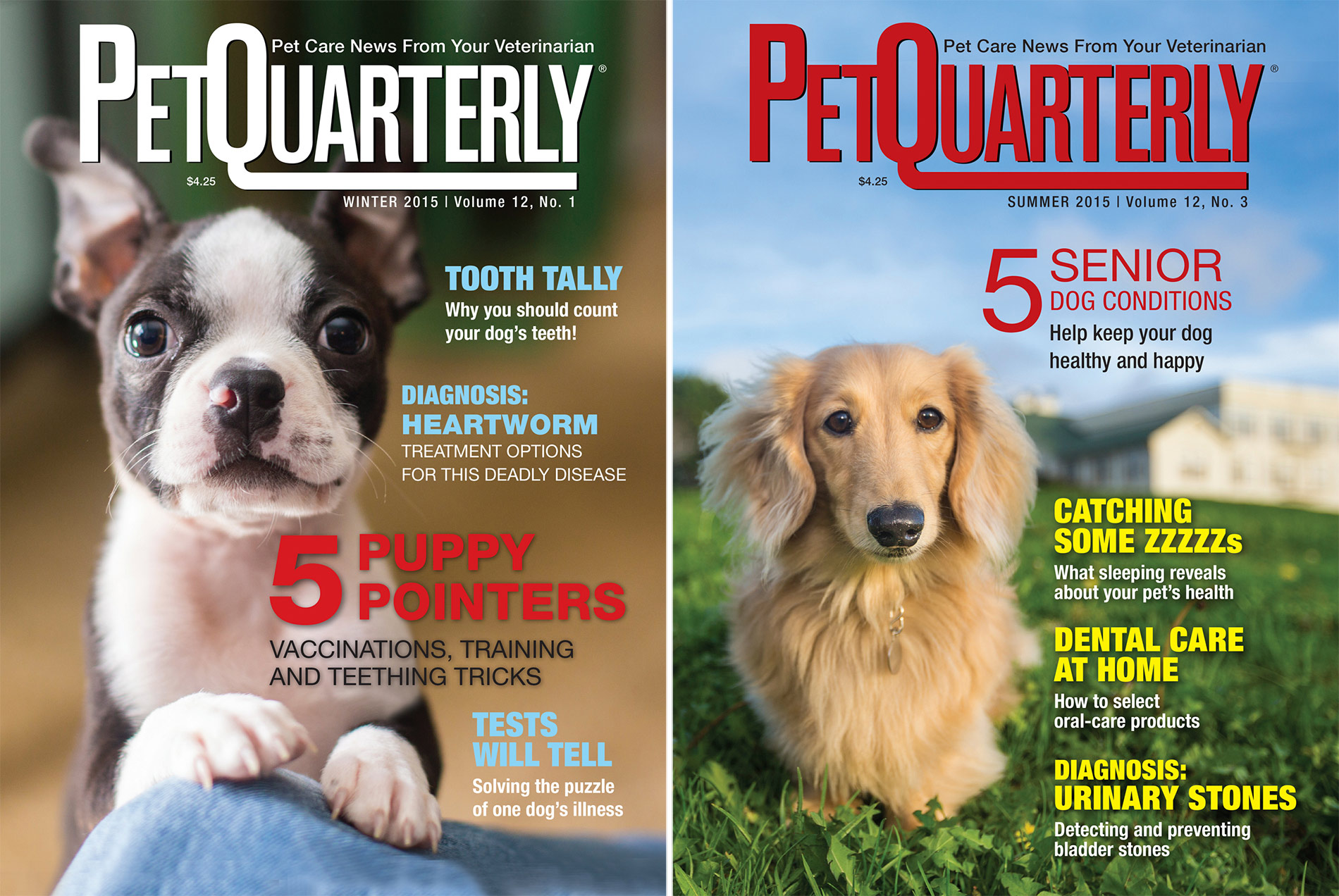 Editorial Photography |Pet Quarterly Magazine Covers by Mark Rogers