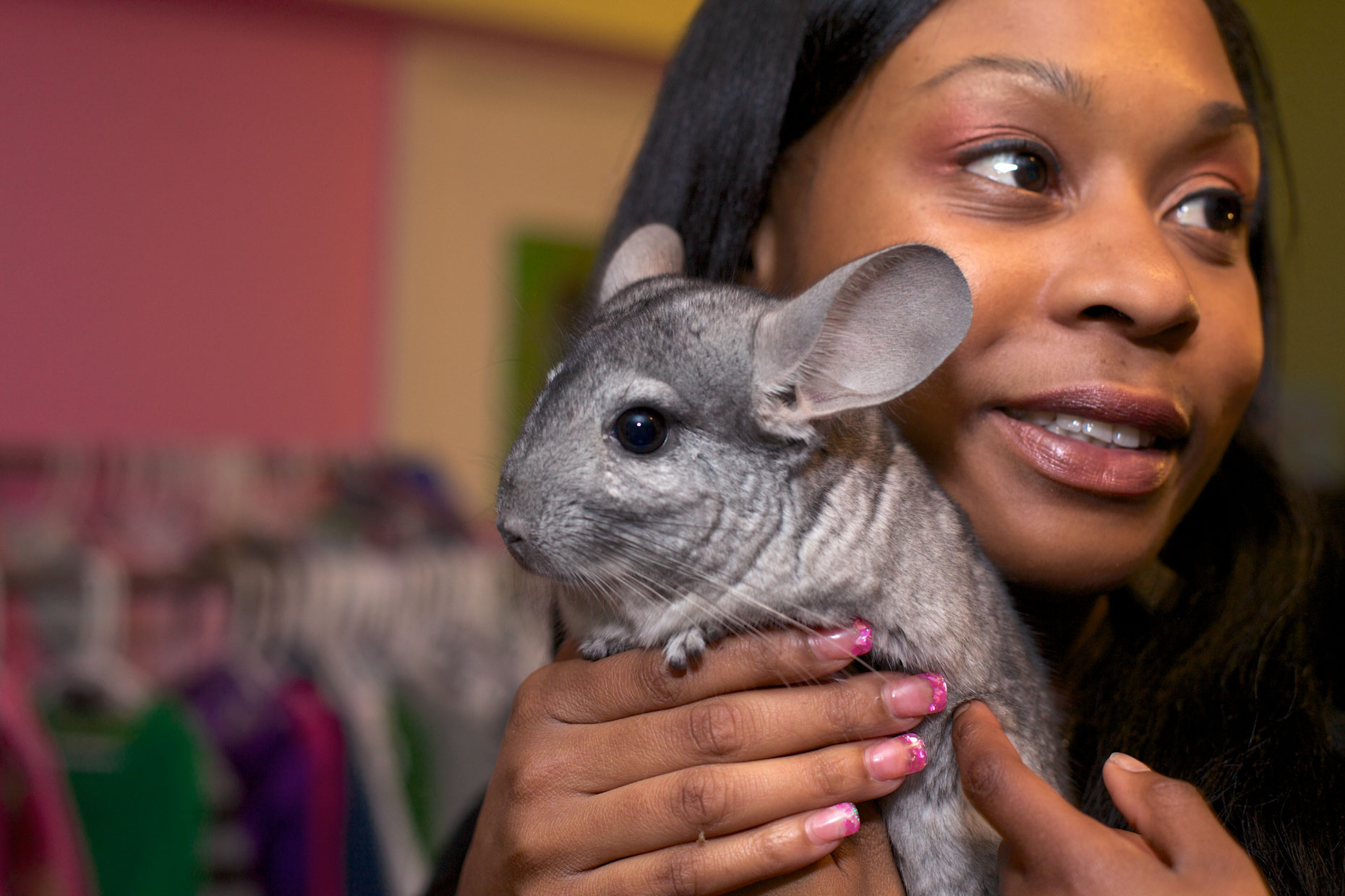 Pet Photography | Woman Holding Chinchilla by Mark Rogers